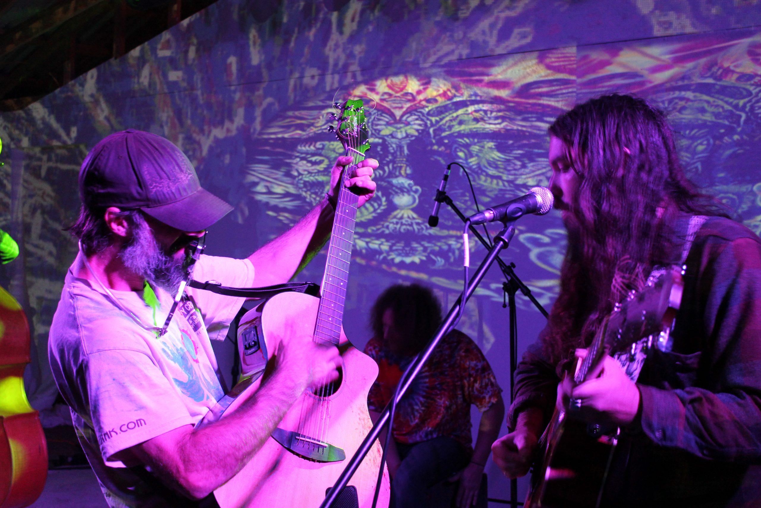 Sleepy Creek Acoustic HarFest Festival Review