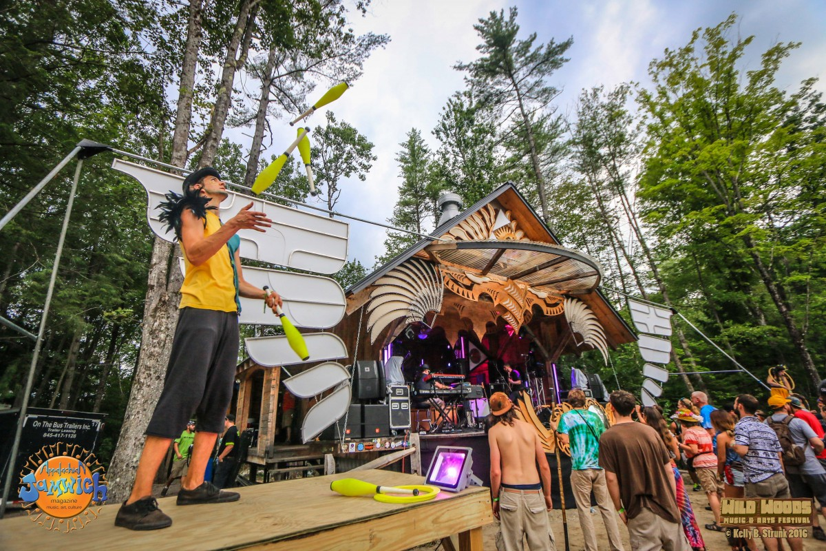 Wild Woods Music & Arts Festival 2016 Review