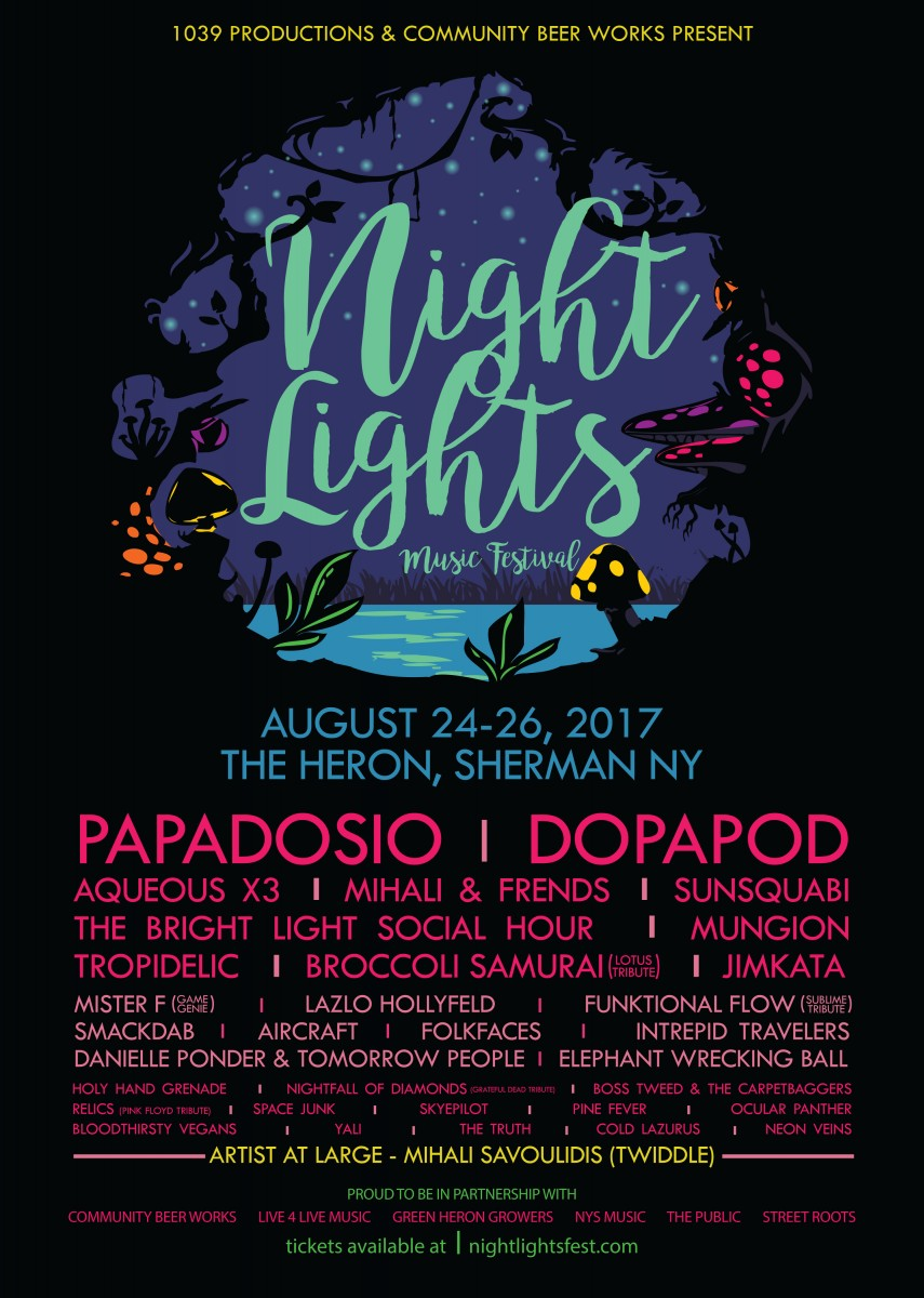 Follow the Light: Night Lights Music Festival is THIS WEEKEND! Aug 24-27 in Sherman, NY
