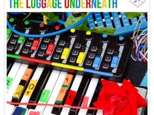 Album Review: Moose Almighty, The Luggage Underneath