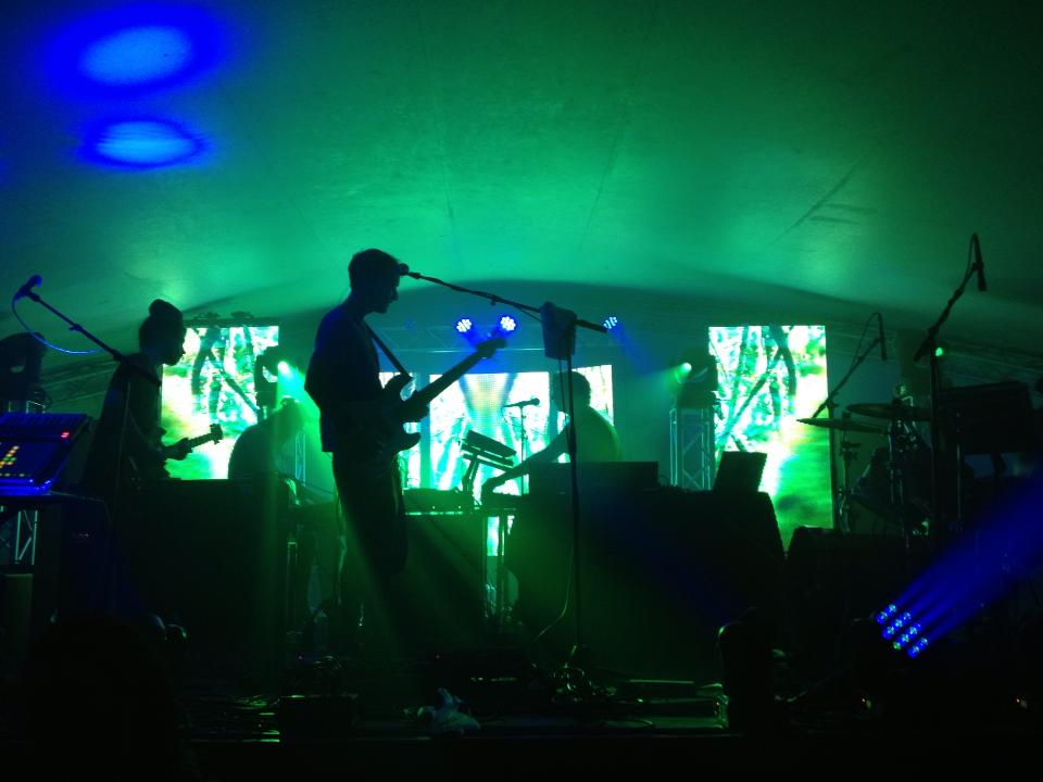 Gratifly Music and Arts Festival July 25-28 Review and Photos