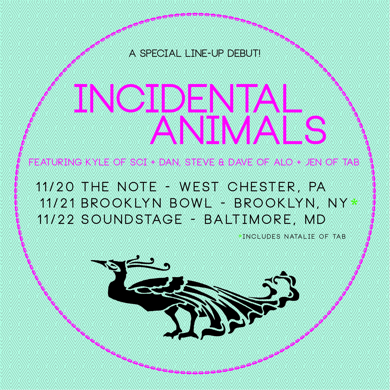 Incidental Animals Review 11/22 at Baltimore Soundstage