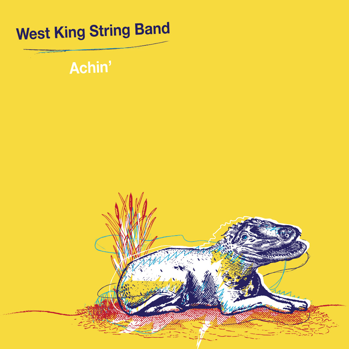 Album Review: West King String Band, Achin