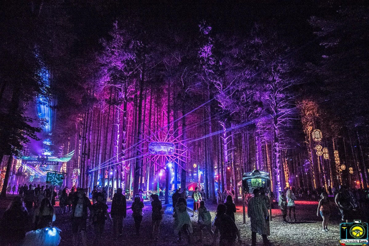 What's Up Weekly: June 25-30, 2019 – Back Home Appalachian Arts & Music Festival, Electric Forest & more