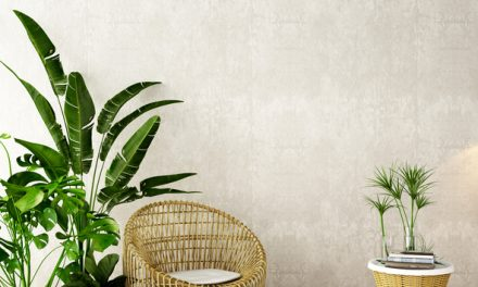 Decorate and Brighten Up Your Home with Indoor Plants