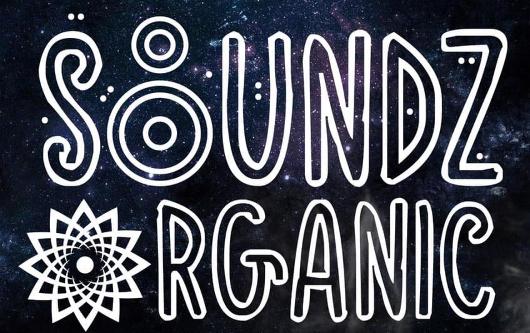 Industry Spotlight: Soundz OrGanic